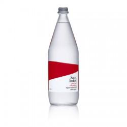 Sant Aniol gazuotas mineralinis vanduo